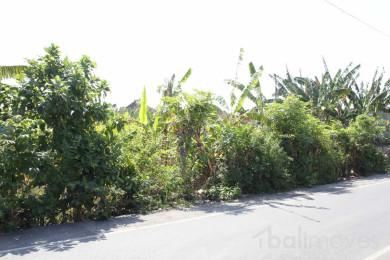 land-for-sale-sanur-l224-2